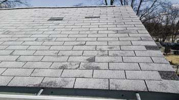 Copy of 4 Common Causes of Roof Leaks